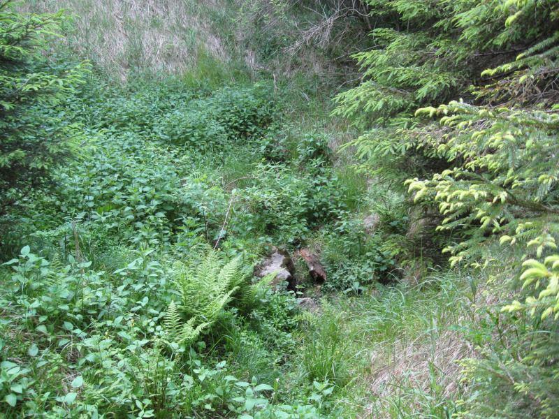 Propadání potoka v Plánivách