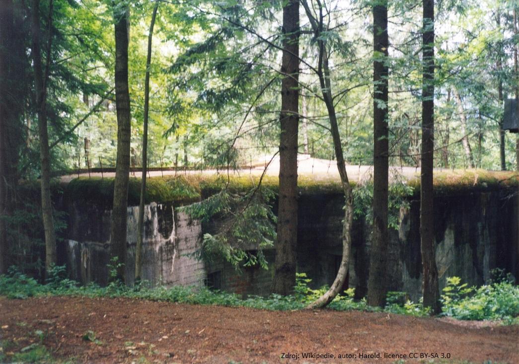 Pěchotní srub U Trati -Branná