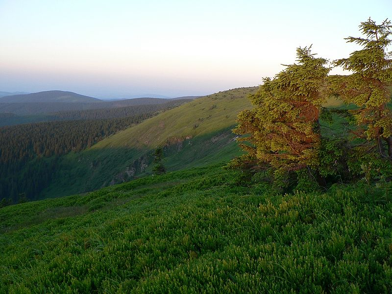 Hohe Heide - Altvatergebirge
