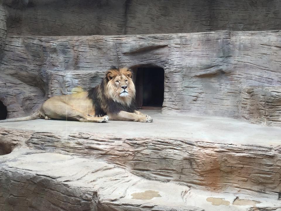 Zoologická zahrada  Olomouc