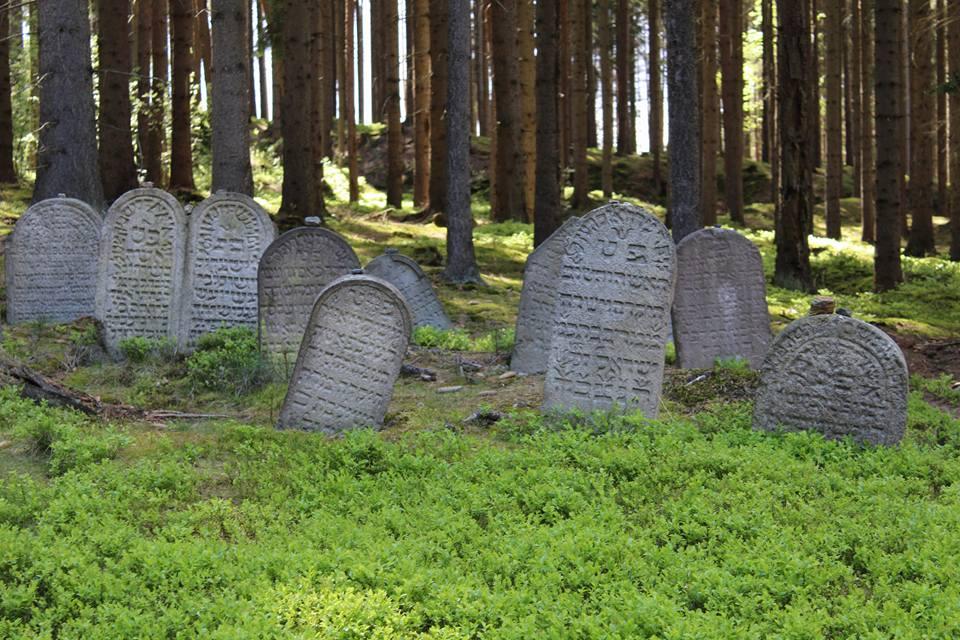 Lesní židovský hřbitov Drmoul
