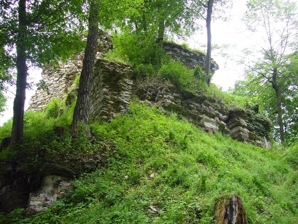 Hrad Brandýs nad Orlicí