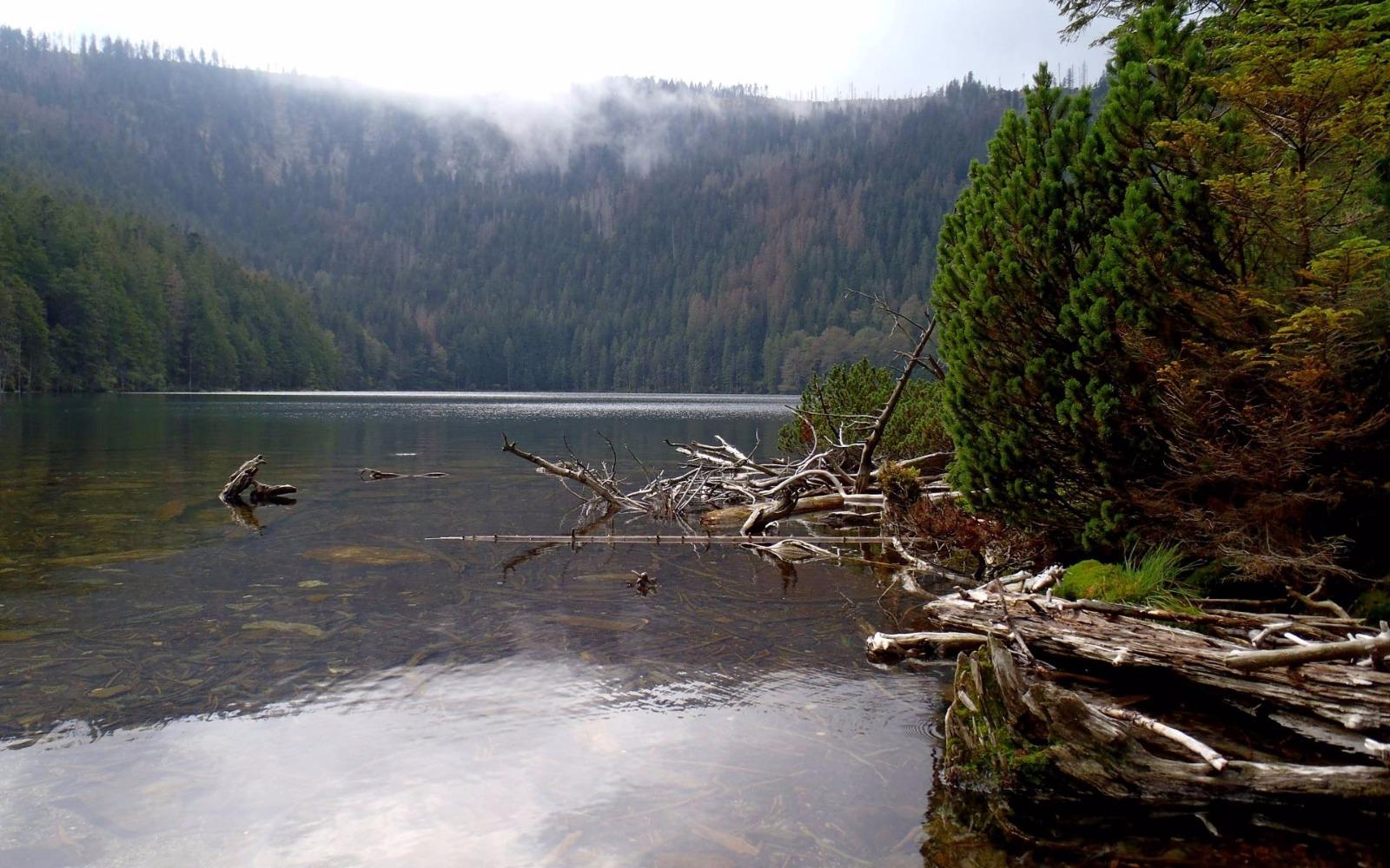 Černé jezero Šumava